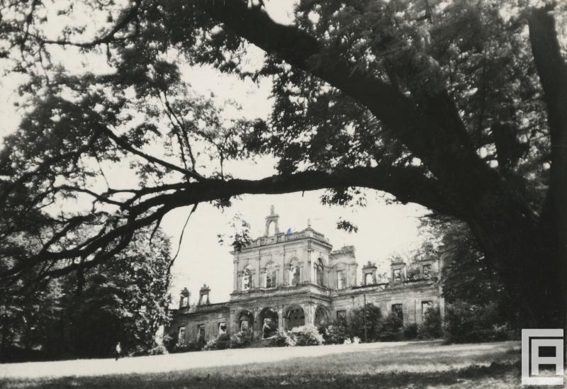 Fotografia przedstawia ruiny barokowo-klasycystycznego pałacu wśród drzew.