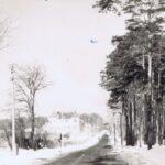 Fotografia przedstawia drogę, zabudowania po lewej i las po prawej.