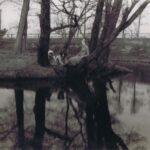 Fotografia przedstawia dwie dziewczyny oparte o drzewa nad stawem. Między nimi siedzi pies.